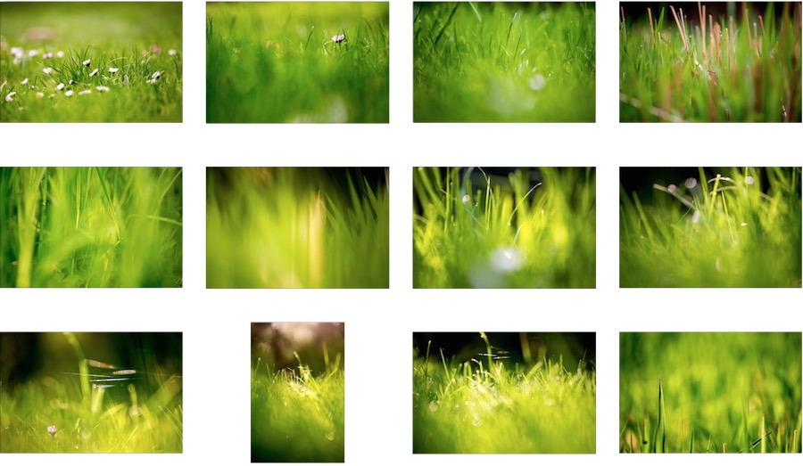 Raccolta della carta da parati dei campi di erba verde