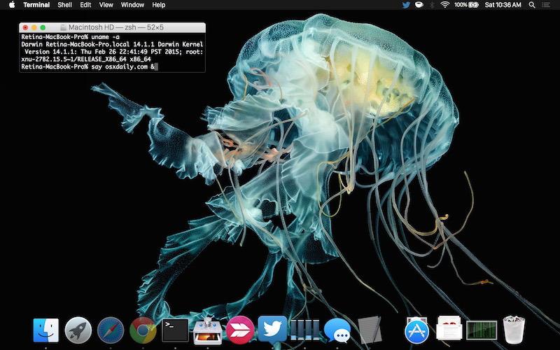 apple-watch-meduse-wallpaper-on-mac