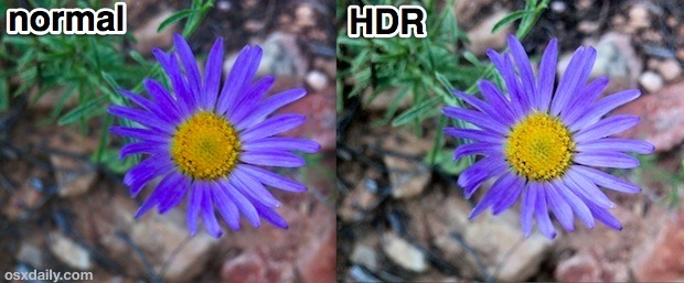Macro shot HD vs HDR normale