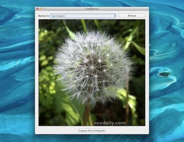Scarica le immagini di Instagram sul tuo computer con Instabackup