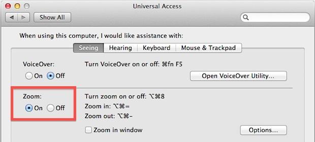 Zoom dello schermo in OS X Lion