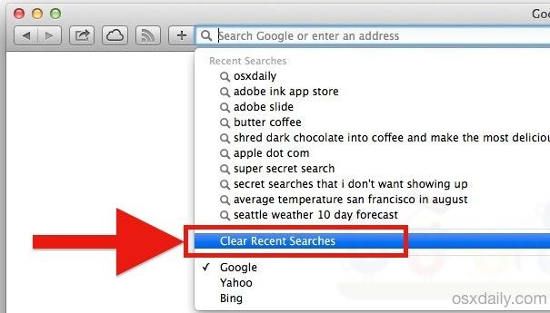 Cancella ricerche recenti in Safari