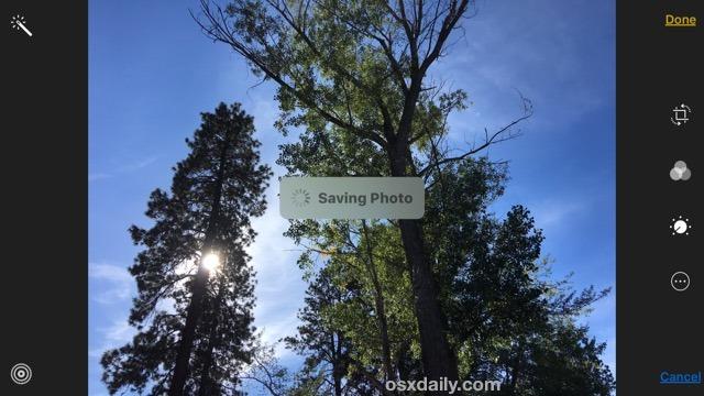 Convertire una foto live in una foto
