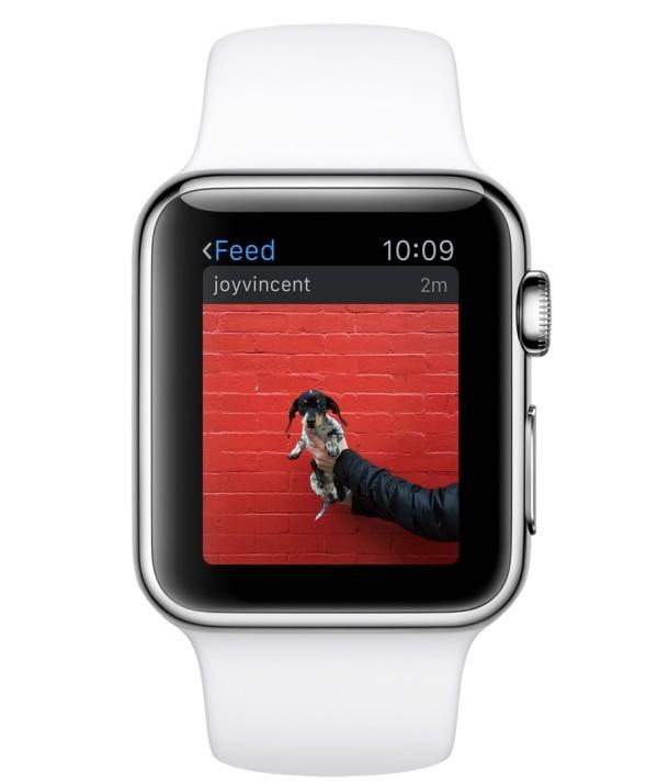 App Instagram su un Apple Watch