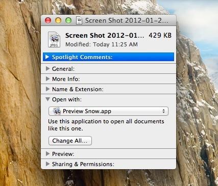 Imposta l'anteprima di Snow Leopard come predefinita in OS X Lion