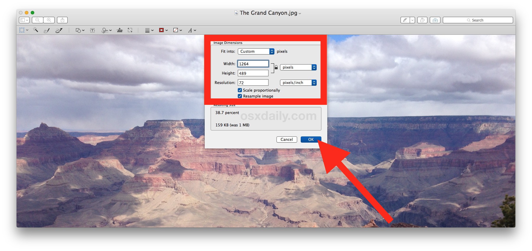 Regola le dimensioni dell'immagine per ridimensionare la foto in Mac Preview