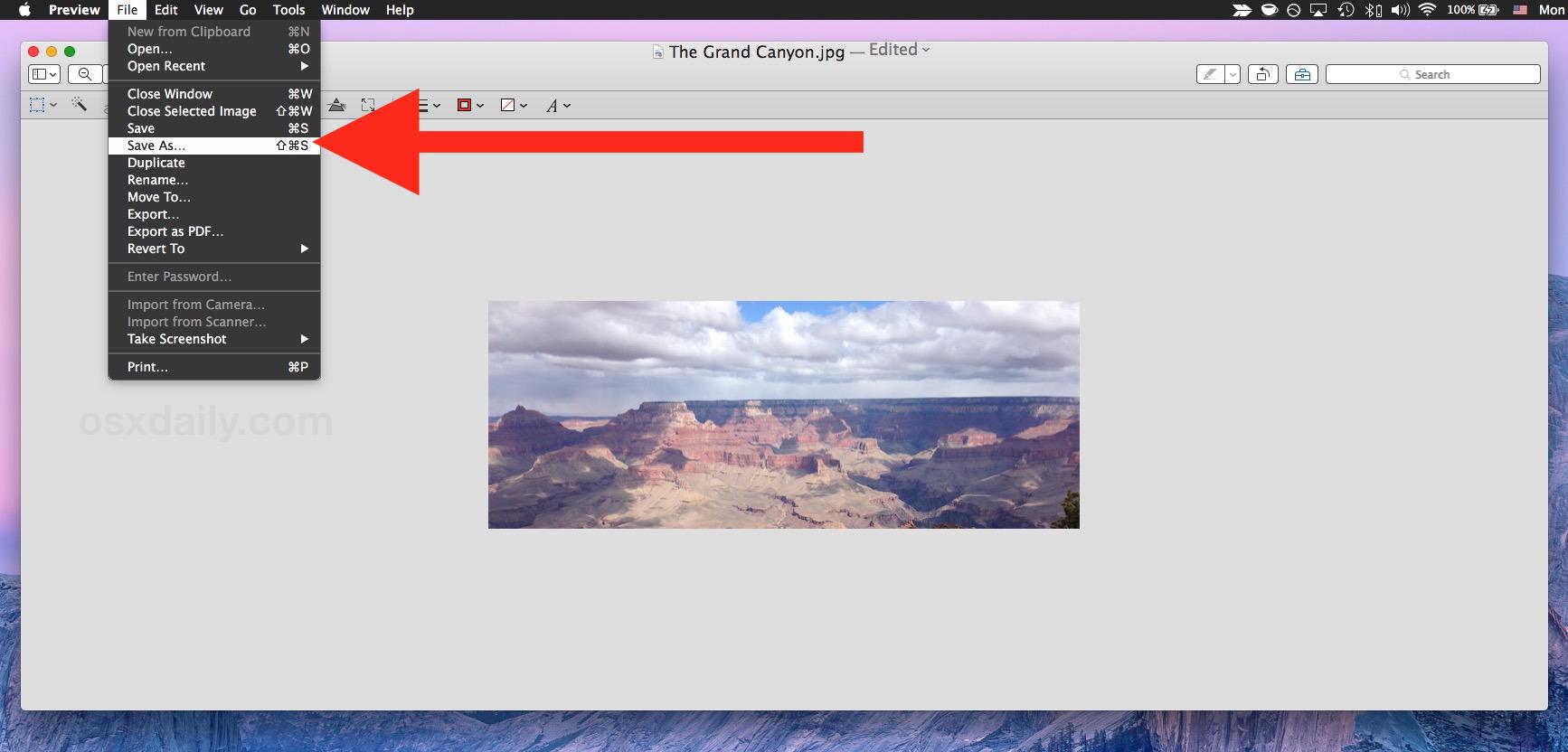 Salva l'immagine ridimensionata su Mac