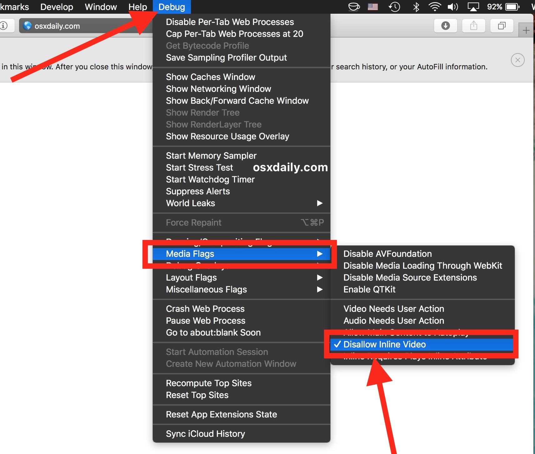 Smetti di autorizzare la riproduzione automatica disattivando i video in linea in Safari su Mac
