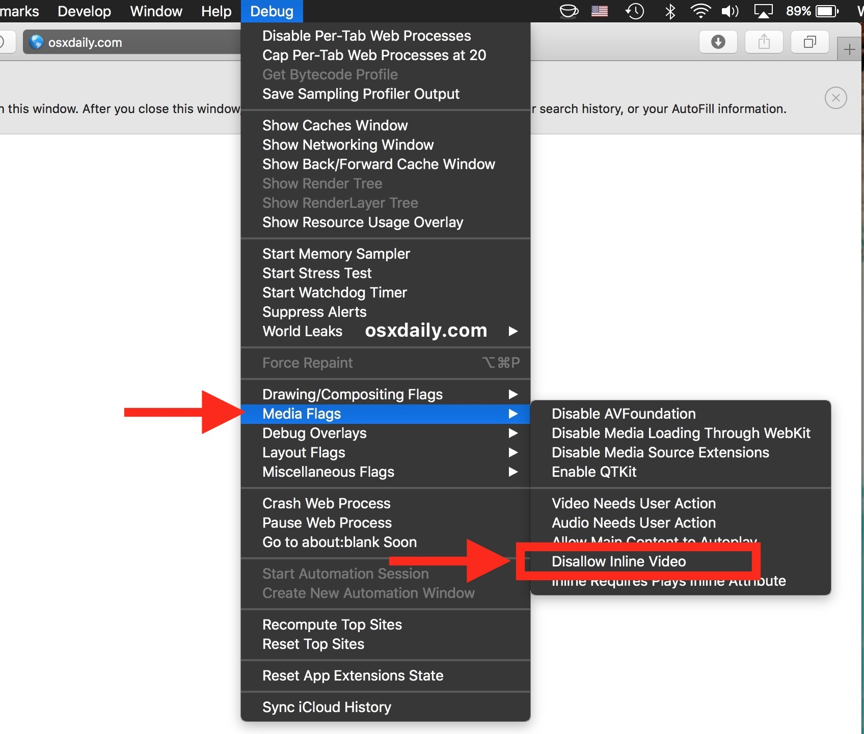 Consenti la riproduzione automatica di video e video in linea su Safari Mac