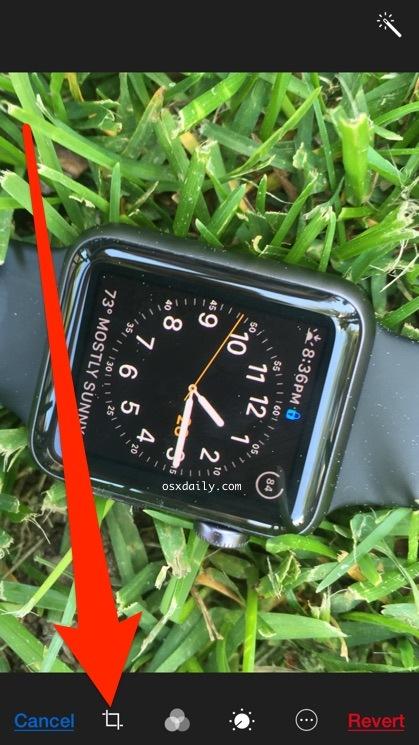Scegli il ritaglio, raddrizza e ruota il pulsante in Photos Edit di iOS