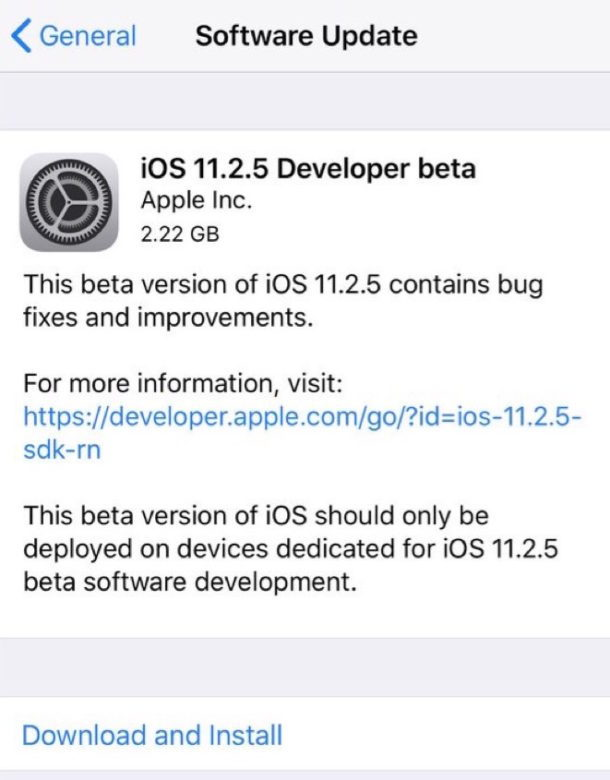 Download di iOS 11.2.5 beta 1