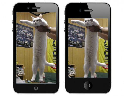 iPhone 5 Longcat