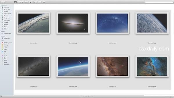 Scheda di prova rapida in Mac OS X