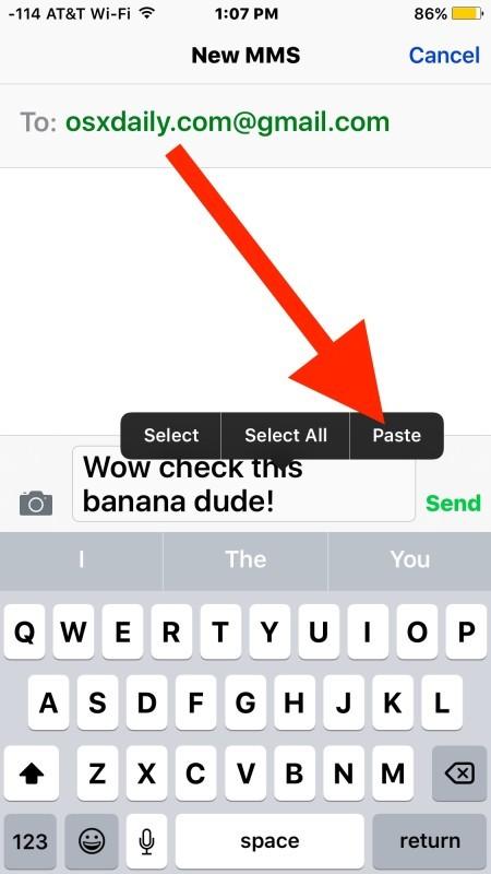 Incolla la GIF animata nella casella dei messaggi di input di invio