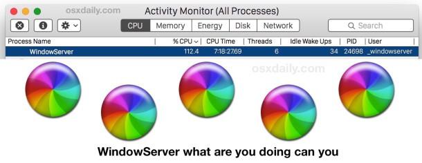 WindowServer, perché mangi così tanta CPU? Ti ho comprato un nuovo Mac, cos'altro vuoi? Per favore WindowServer, sii gentile.
