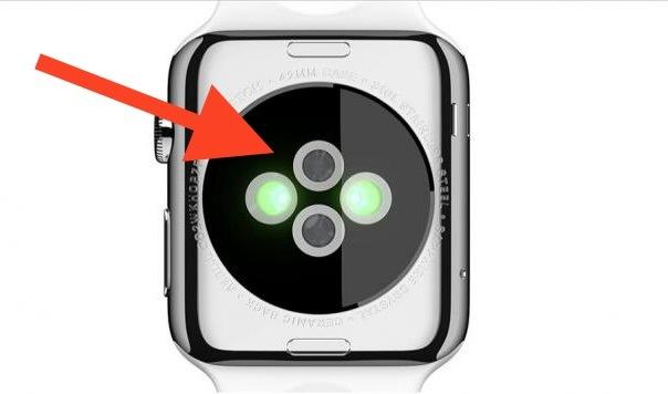 Bottom of Apple Watch dove i sensori sono per la frequenza cardiaca ecc