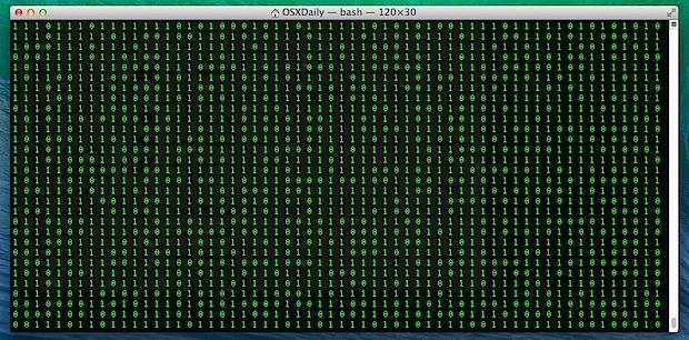 Scorrimento della finestra del terminale binario