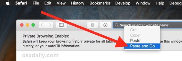 Incolla e vai nella barra degli indirizzi di Safari per Mac